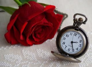 Символ шоу Холостяк и часы символизирующие течение времени и жизни